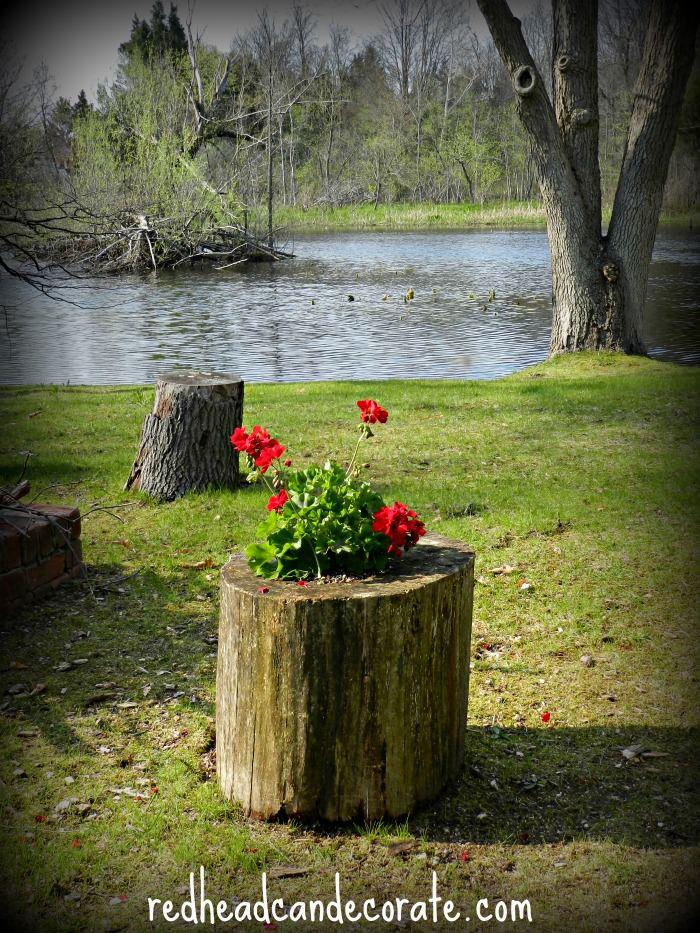 Easy Stump Planter