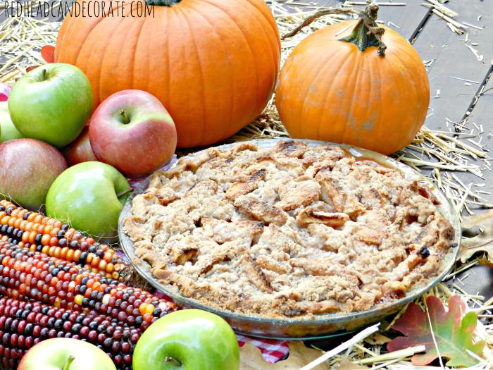 Best Dutch Apple Pie Recipe
