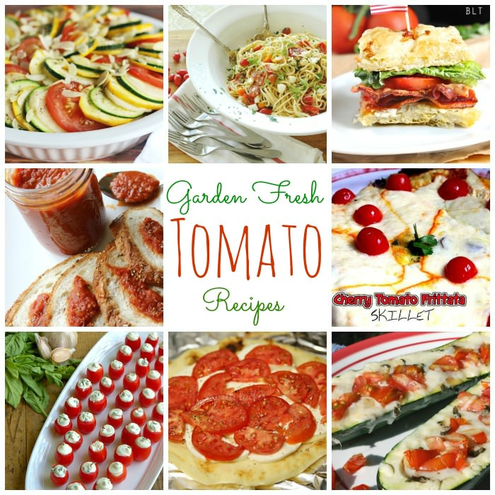 garden fresh tomato recipes and inspiration monday