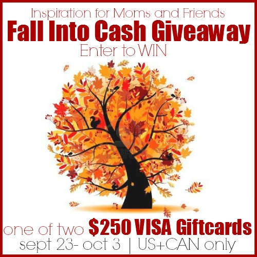 Fall Into Cash Blog Button