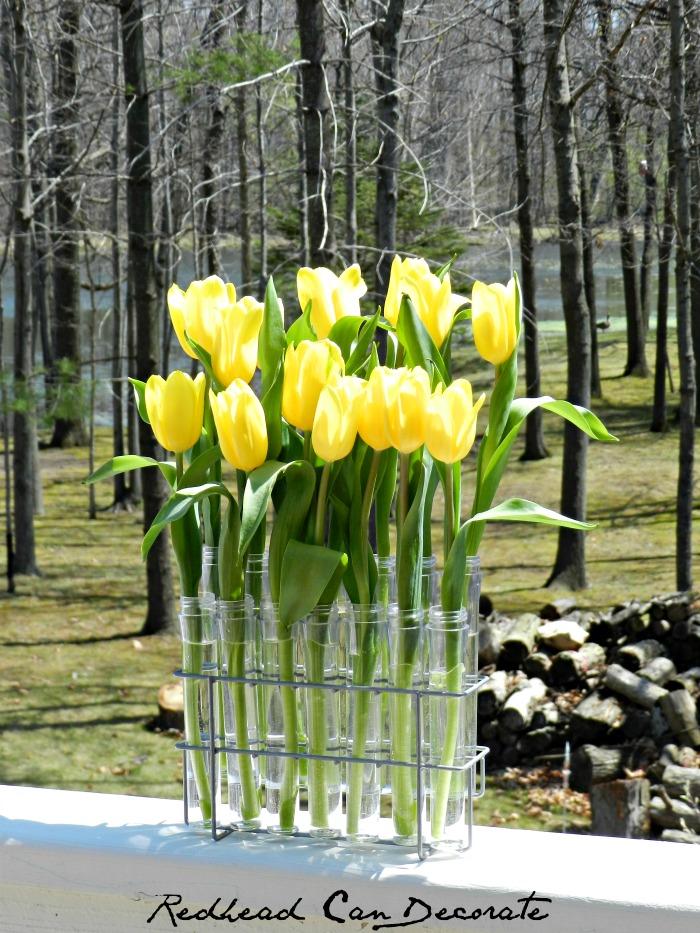 Spice Rack Turned Tu;ip Vase...awesome!