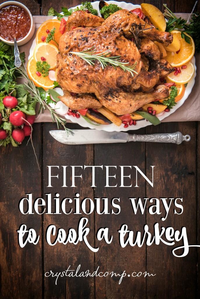 15-ways-to-cook-a-turkey-687x1024