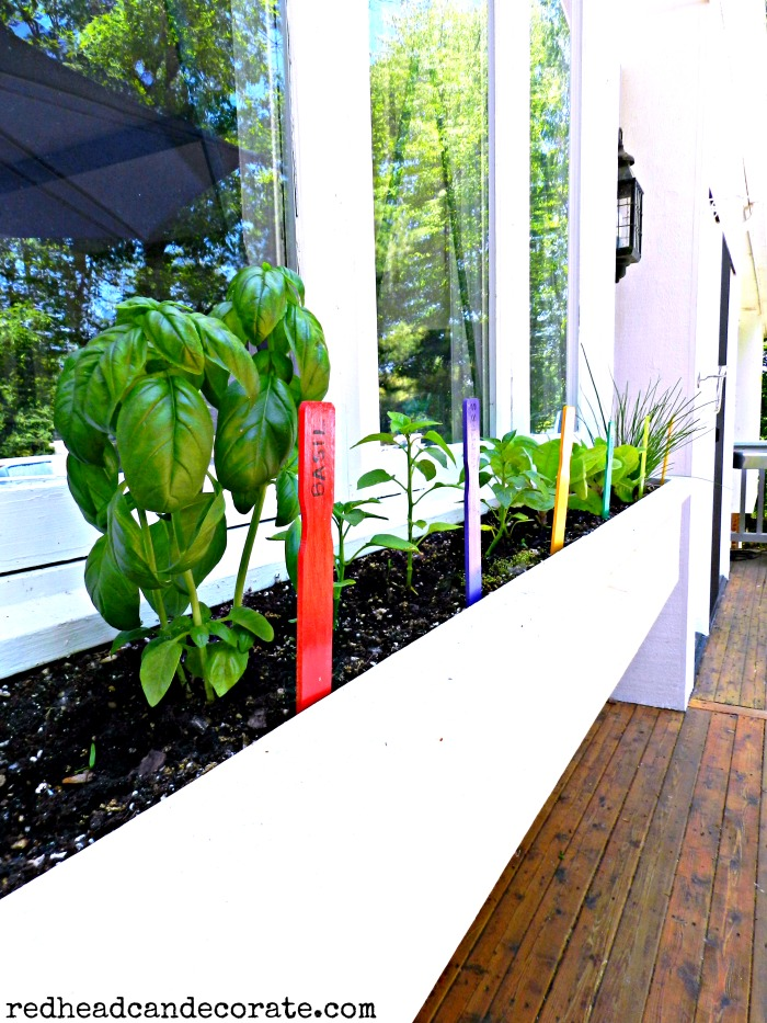 Free Paint Stick Garden Markers
