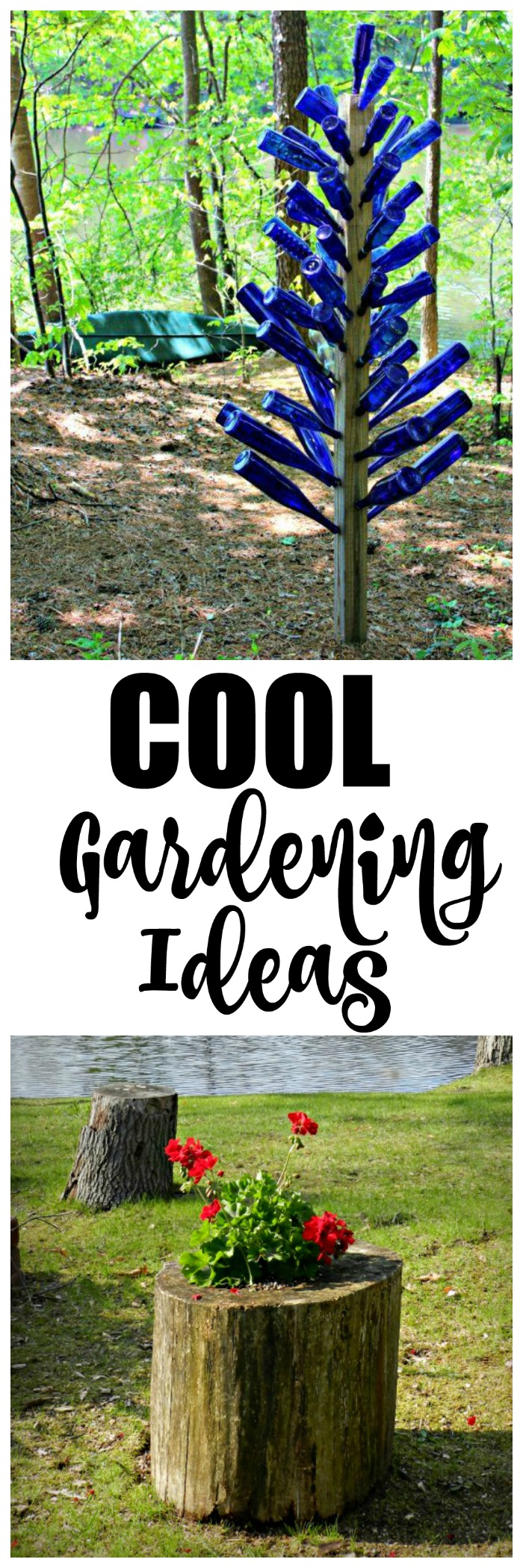 cool gardening ideas redhead can decorate
