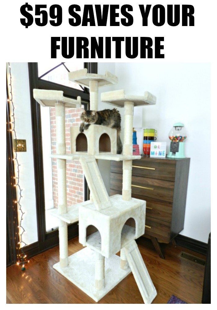 Keep your cat off your furniture with this surprisingly affordable cat tree!