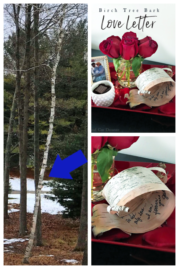 Affordable Valentine's Day! Check out this Birch Tree Bark Love Letter made from tree bark, and the vase is salsa jar!