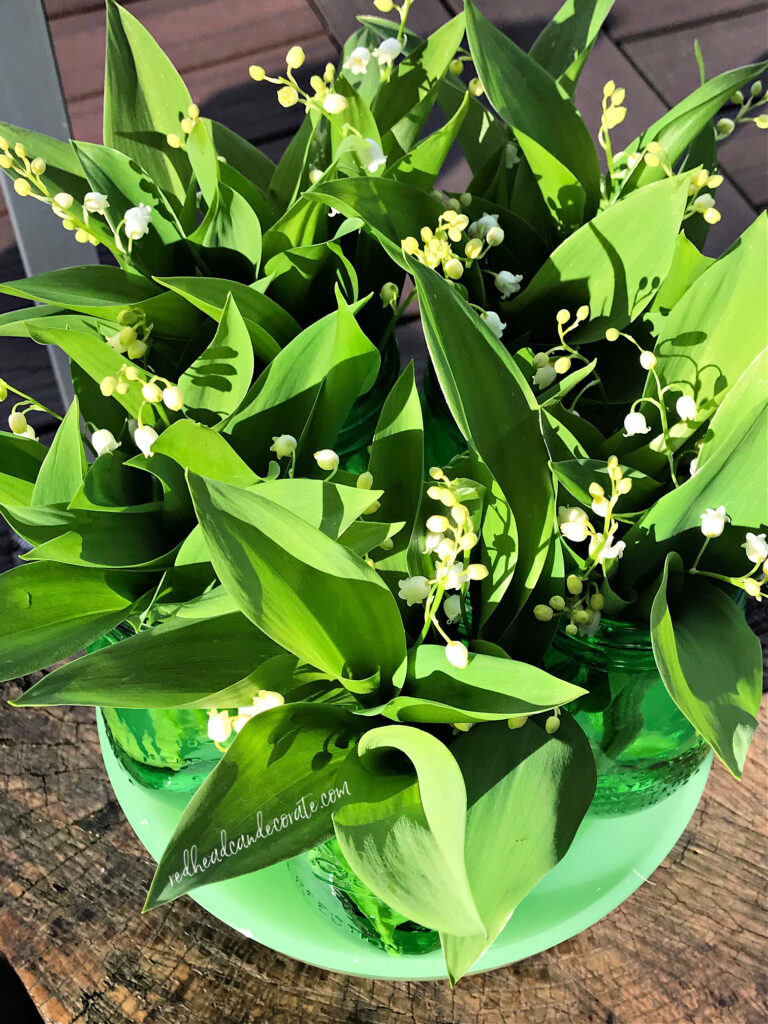 This simple Lily of the Valley Green Ball Jar Centerpiece is so gorgeous for spring it glows and has an amazing scent.